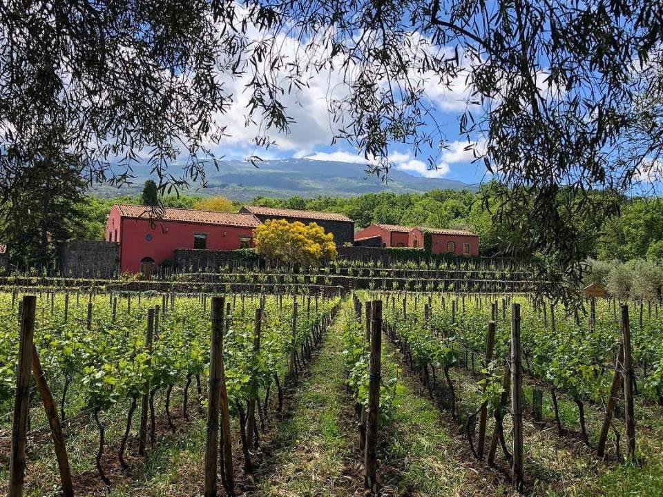 Una delle cantine della strada del vino dell'Etna (foto da winerytastingsicily.com)